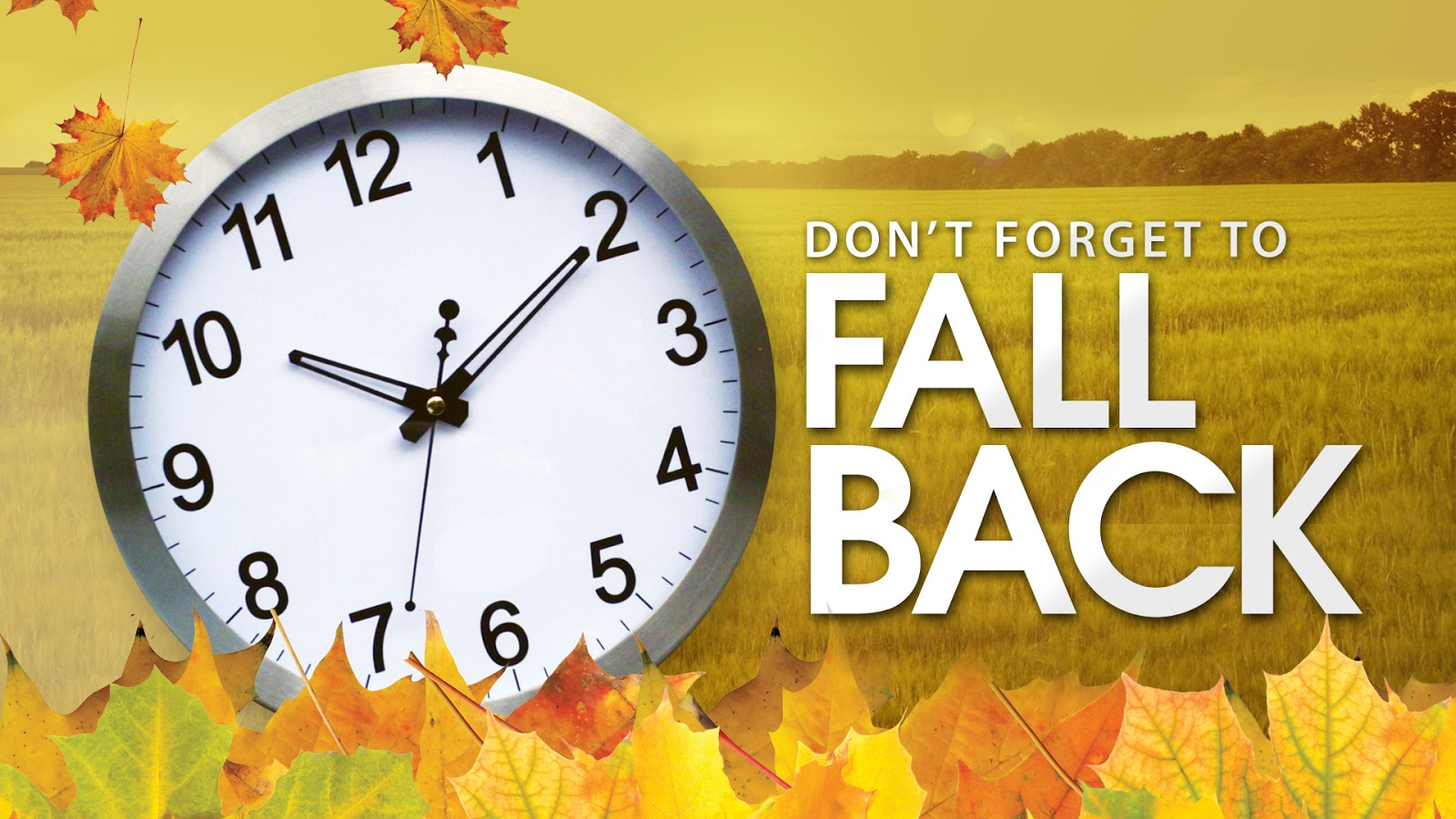 Don't forget to fall back 1 hour